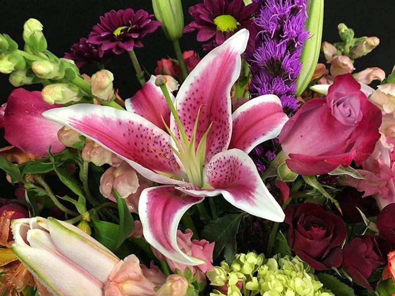Adıyamanın En Seçkin Çiçekçisi
